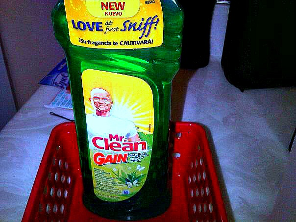 Let's Talk Cleaning: I'm Totally Addicted To Mr Clean With Gain!