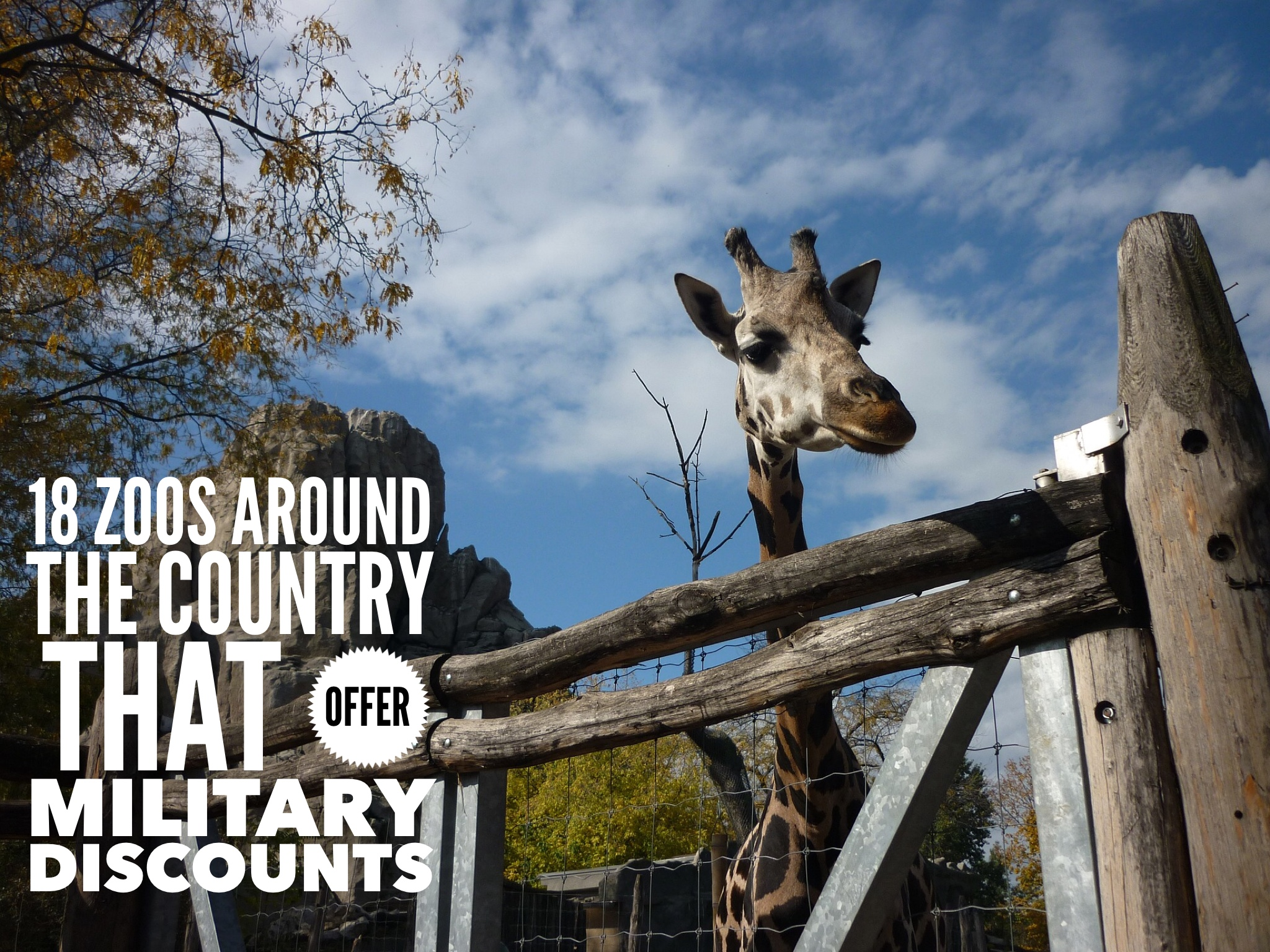 18 Zoos Around The Country That Offer Military Discounts