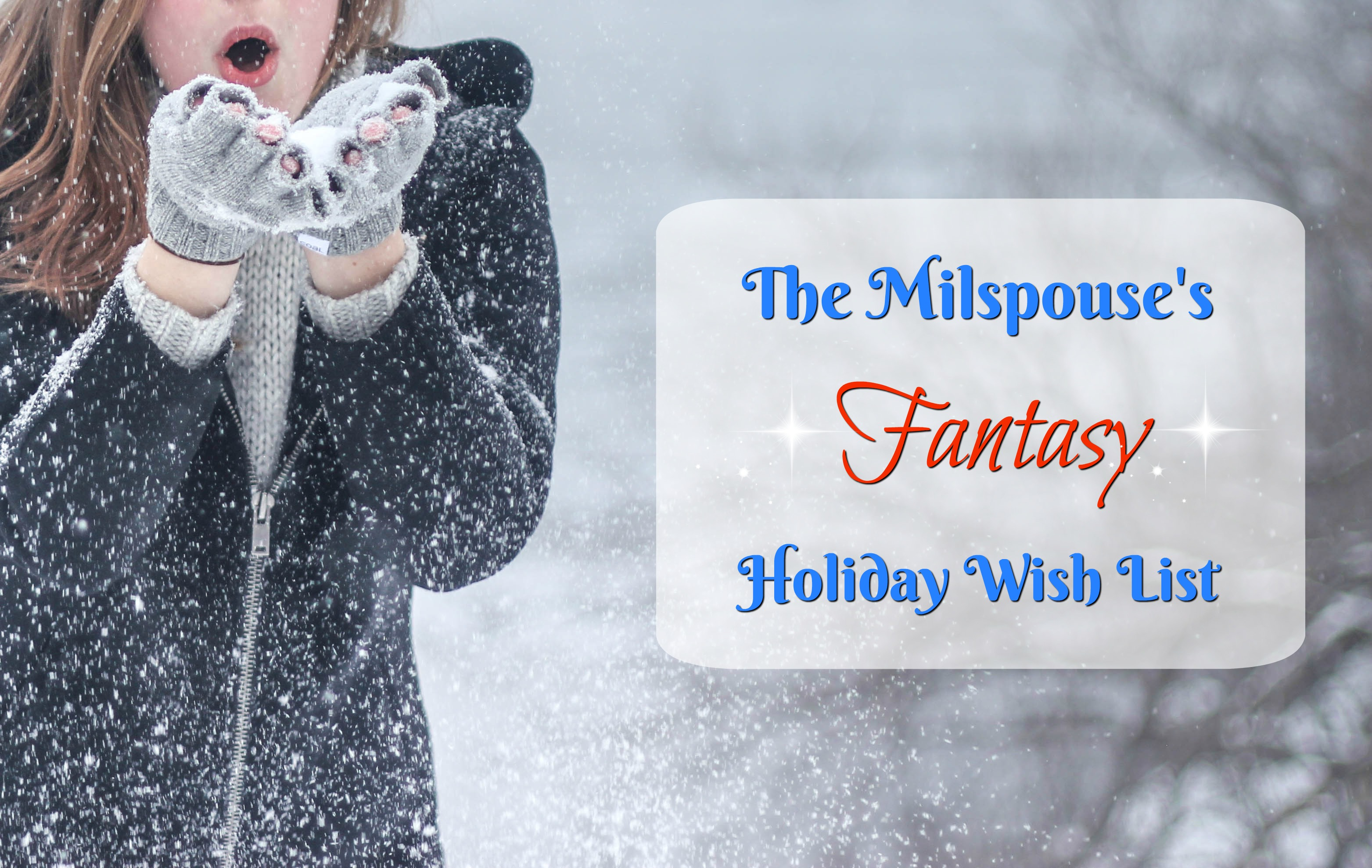 The Milspouse's Fantasy Holiday Wish List