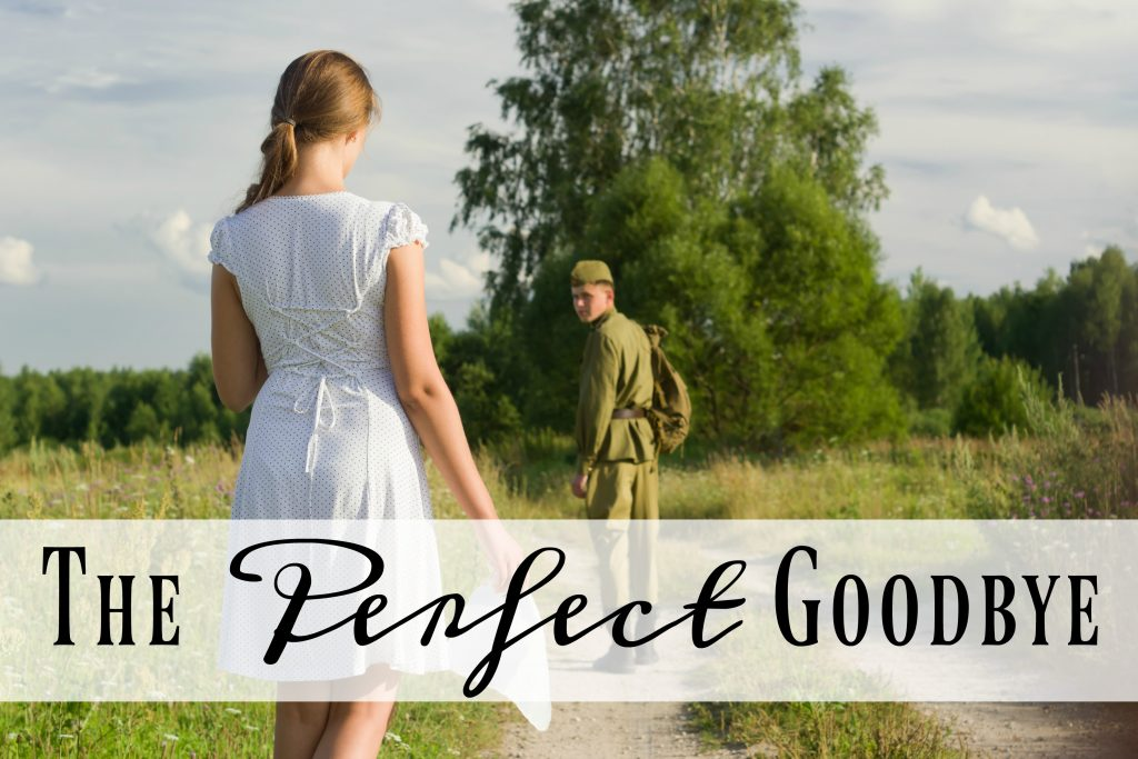 theperfectgoodbye