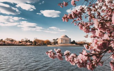 8 Ways To Jump Into Fall In And Around Washington, DC